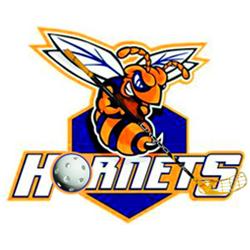 FBK Hornets Mútne